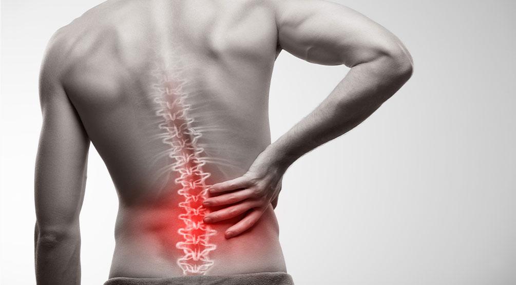 腰・股関の痛み
